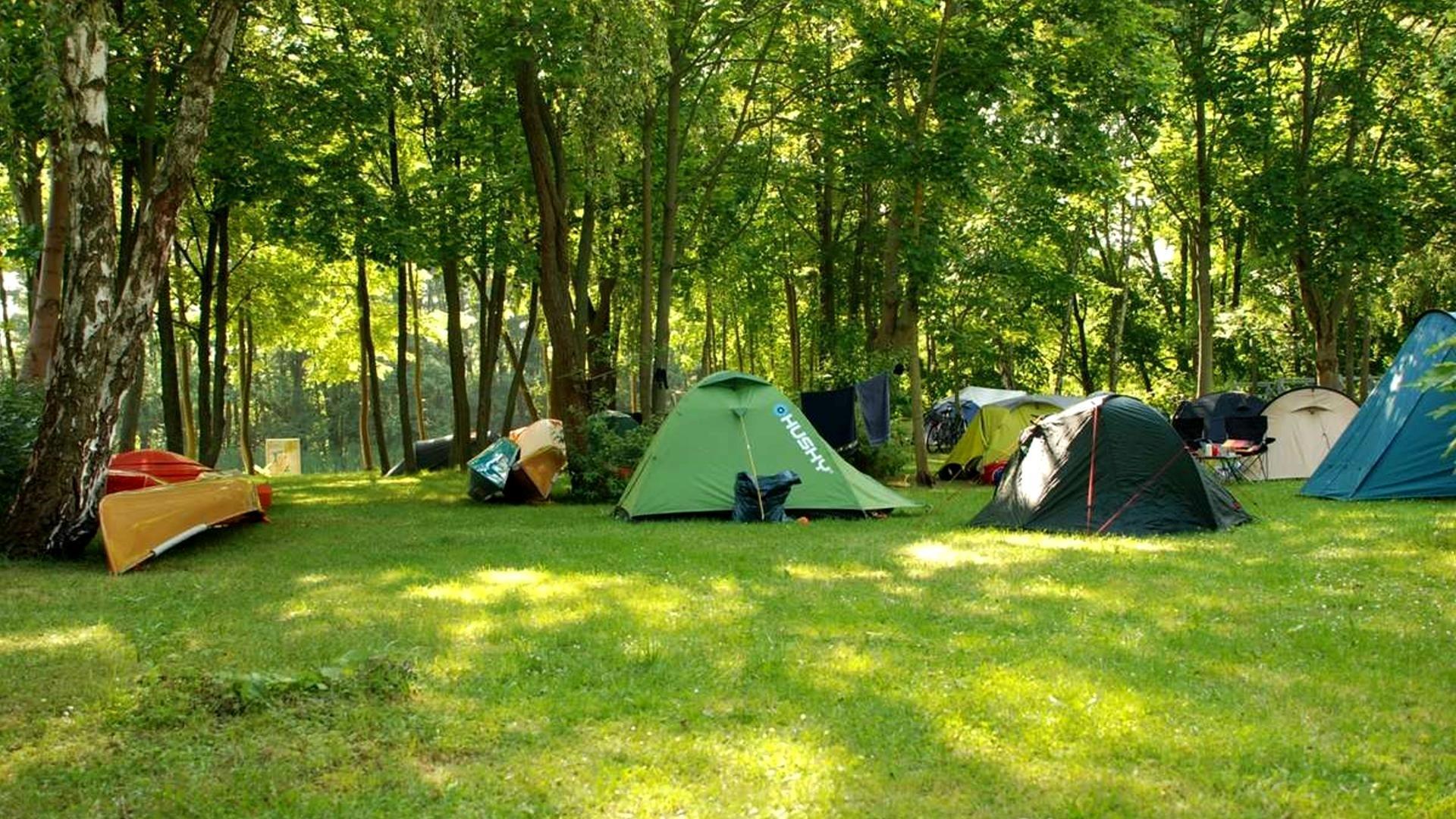 Camping-Zelten-Mecklenburg-Seenkette-Mueritz-Alter-Hafen-Klassenfahrt-Klassenreise-02